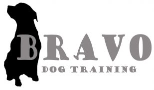 Bravo Dog Training